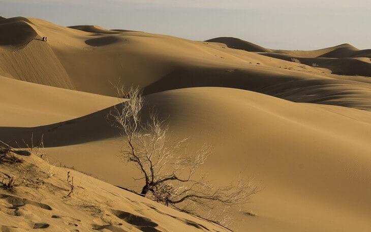 Tabas desert - Iran desert